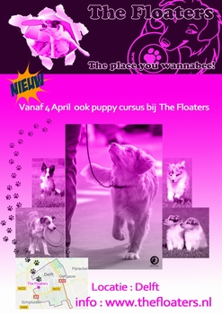 Puppycursus Start op 15 augustus om 19.15 uur.